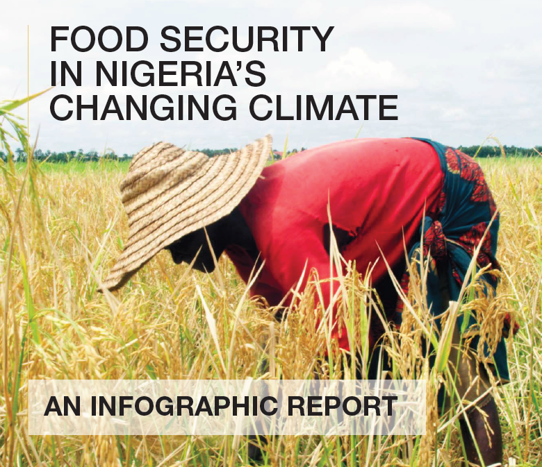 Food Security Infographic Report